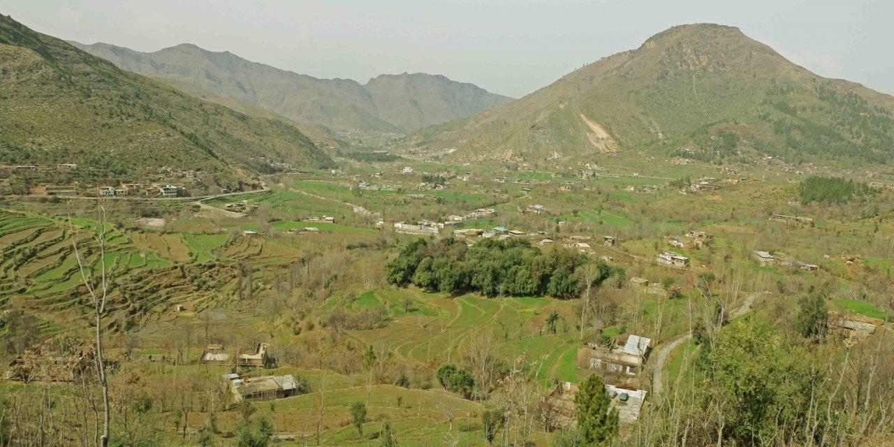 گاؤں سپل بانڈئی، جہاں ایک ہی دادا کی اولاد رہتی ہے