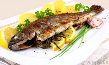 کھانے میں مچھلی کا استعمال کیوں ضروری ہے؟