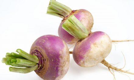 ایک عام سی سبزی کے کئی خاص فائدے
