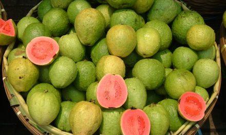 امرود، قدرت کا انمول تحفہ