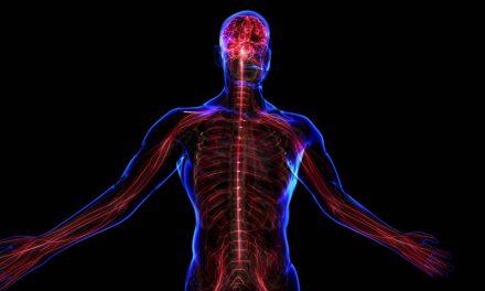 کیا آپ جانتے ہیں کہ انسانی اعصاب کی لمبائی کتنی ہے؟