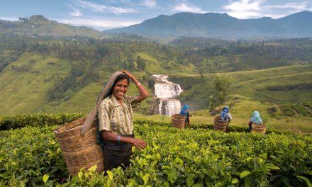 آئیں، سری لنکا کی سیر کریں
