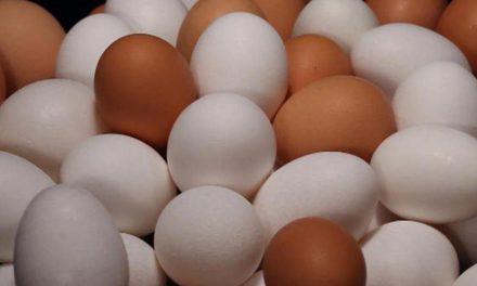 گندا انڈا پہچاننے کا نسخہ