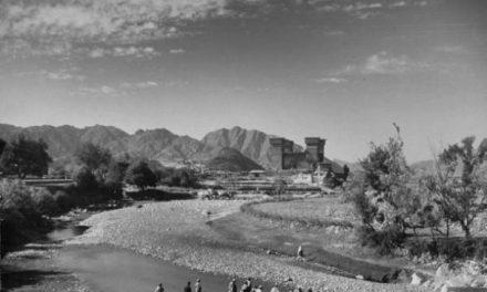 سوات میں پختو زبان کا آغاز و ارتقا