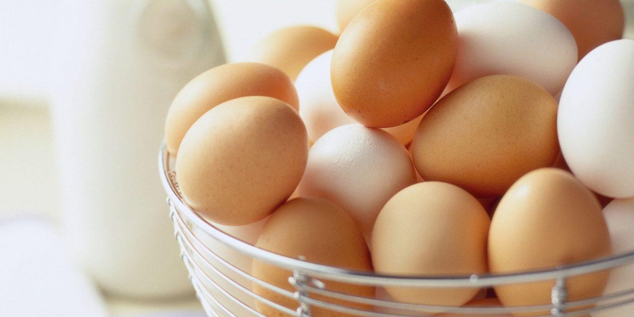انڈوں کو خراب ہونے سے محفوظ رکھنے کا نسخہ