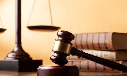 پیشہ ور مقدمہ باز اور قانون