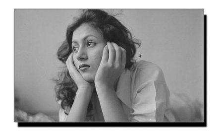 تیئس فروری، مدھو بالا کا یومِ انتقال