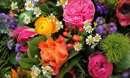 گل ہائے رنگ سے ہے زینتِ چمن