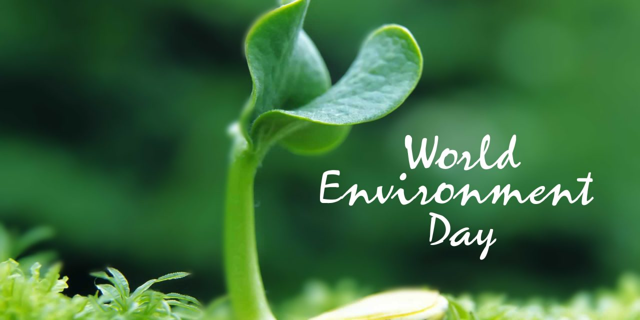 پانچ جون، ماحولیات کا عالمی دِن