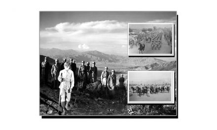 افواجِ ریاستِ سوات کی تحلیل