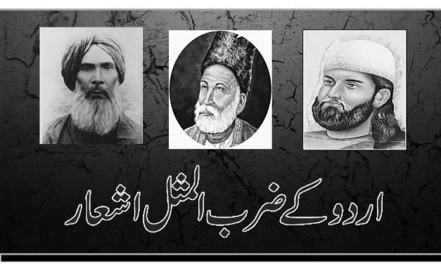 اردو کے ضرب المثل اشعار