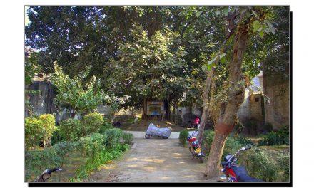 باؤلی باغ لاہور تاریخ کے آئینہ میں