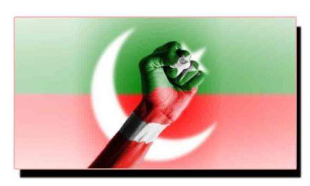 ضمنی بلدیاتی انتخابات، تحریک انصاف چھا گئی