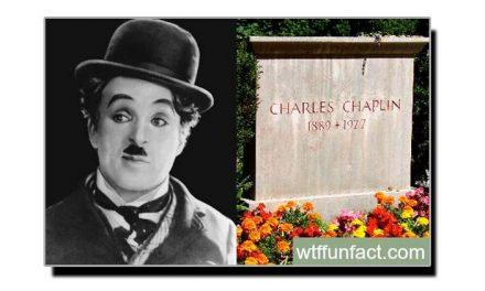 سترہ مئی، چارلی کی چوری شدہ لاش بازیاب