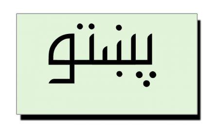 ریاستِ سوات کی پشتو زبان کے  لیے خدمات