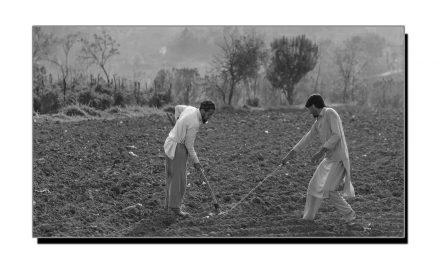 ریاستِ سوات کی تجارت اور صنعت و حرفت کا مختصر جائزہ