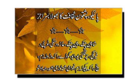 پائیکو، پشتون ثقافت کا بھولا بسرا جز