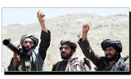 طالبان پالیسی فائدہ مند یا نقصان دہ؟