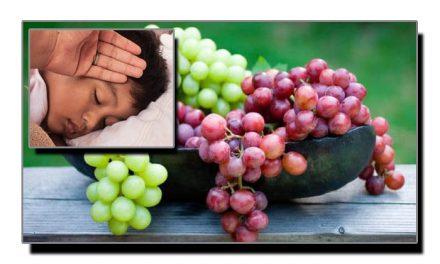انگور، بخار کا بہترین توڑ