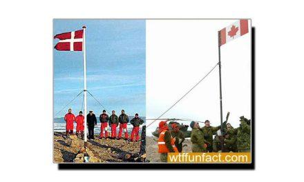 """کینیڈا اور ڈنمارک کا """"مثالی"""" تنازعہ"""