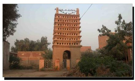 جیکب آباد کا تاریخی کبوتر گھر