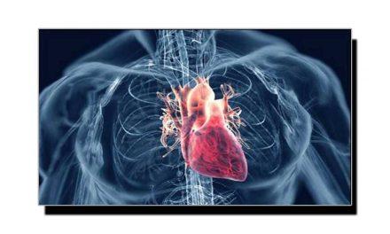 نفس اور دل