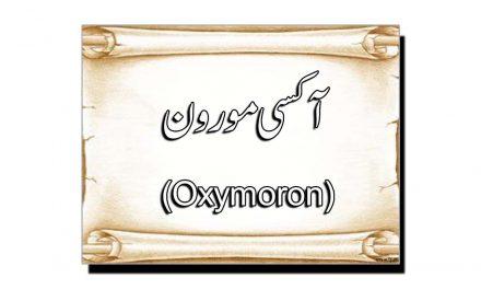 آکسی مورون (Oxymoron)