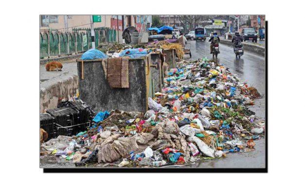 پلاسٹک کی تباہ کاریاں