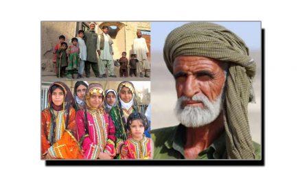افغان، حرام خور نہیں
