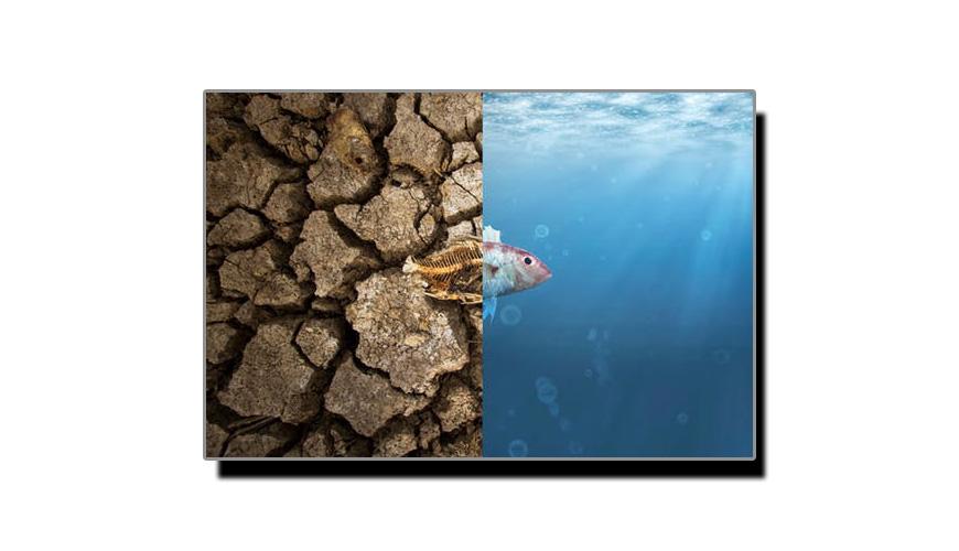 موسمیاتی تبدیلی اور ہم