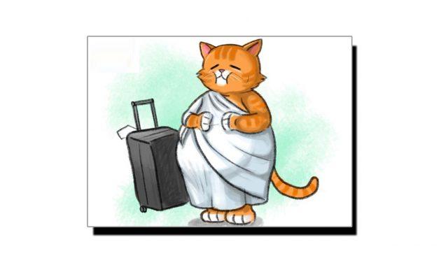 نو سو چوہے کھا کے بلی حج کو چلی (کہاوت کا پس منظر)
