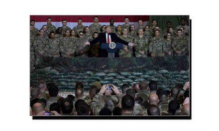 امریکہ، افغانستان میں جنگ بندی کیوں چاہتا ہے؟