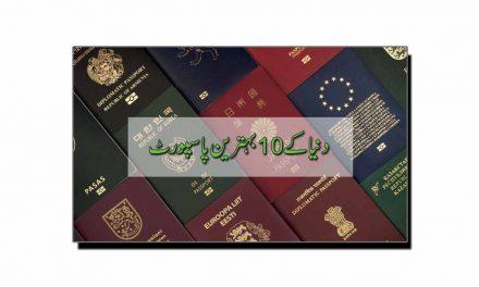 دنیا کے دس طاقتور ترین پاسپورٹ