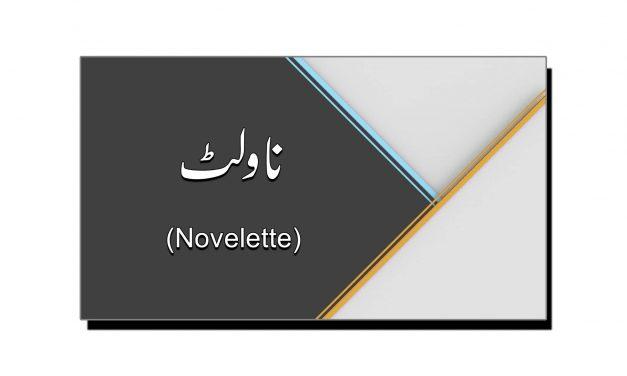 ناولٹ (Novelette)