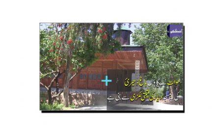 باغ ڈھیریٔ کی دیار کی لکڑی سے بنی منفرد مسجد