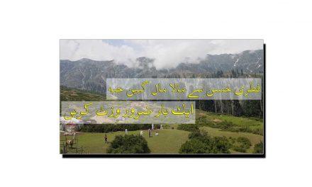 فطری حسن سے مالا مال گبین جبہ