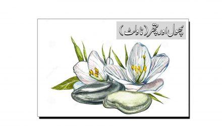 ''پھول اور پتھر'' کا مختصر جائزہ