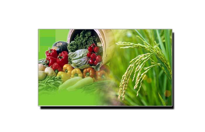 ملکی ترقی میں زرعی معیشت کا کردار