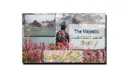 مشروم جھیل، سوات