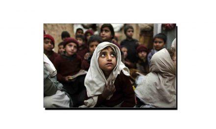 تعلیم، سیاست، سماج ، غیرت اور طاقت