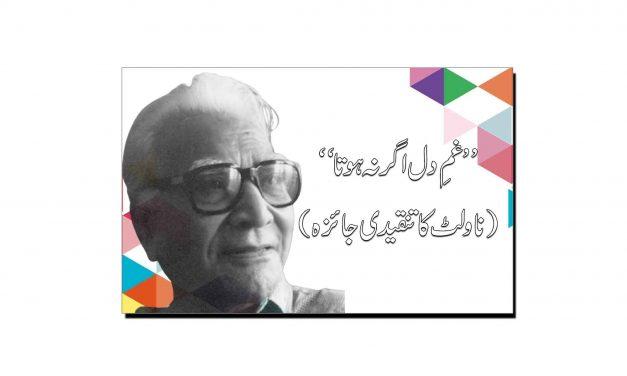 شوکت صدیقی کے ناولٹ ''غمِ دل اگر نہ ہوتا'' کا تنقیدی جائزہ